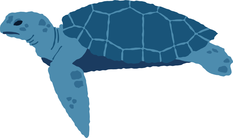 style sea turtle side Vector images in PNG and SVG | Icons8 Illustrations