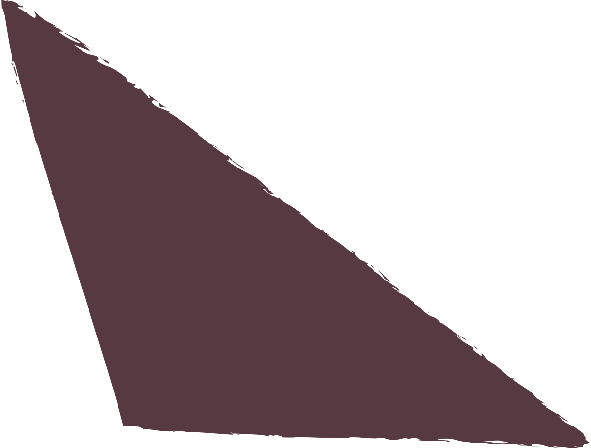 scalene-dark-brown Clipart illustration in PNG, SVG