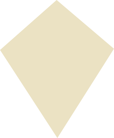 style kite beige images in PNG and SVG | Icons8 Illustrations
