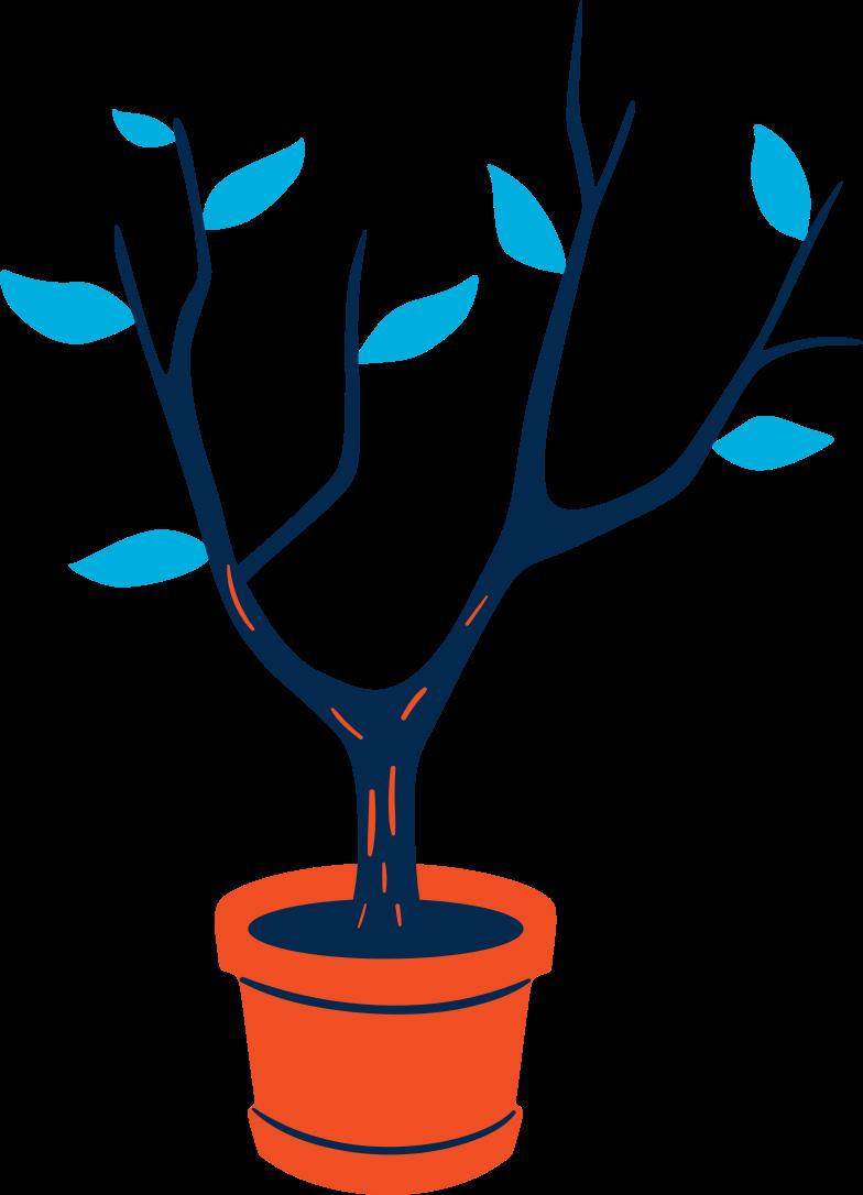 tree in flower pot Clipart illustration in PNG, SVG