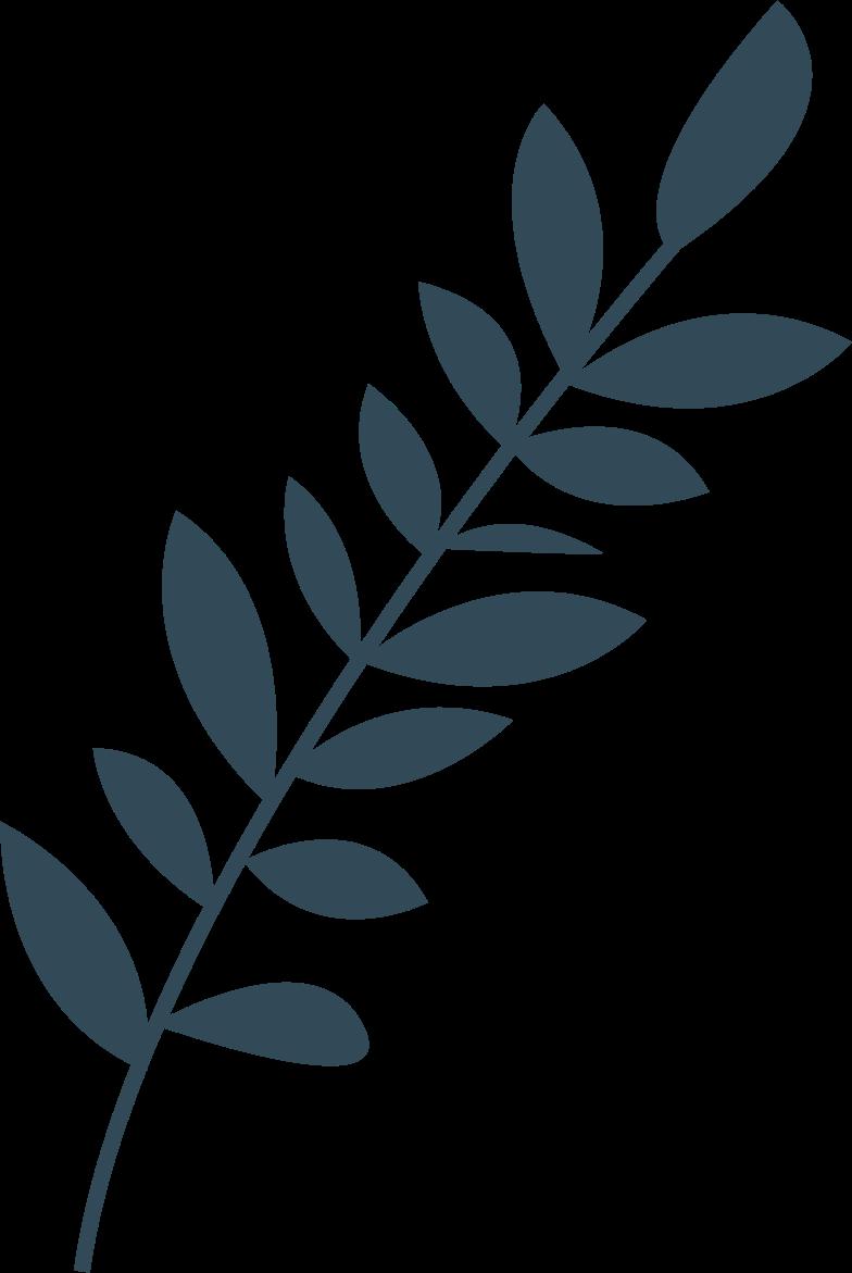 dark grass Clipart illustration in PNG, SVG