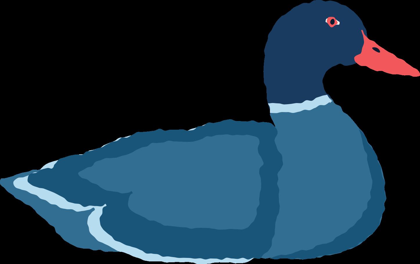 drake Clipart illustration in PNG, SVG
