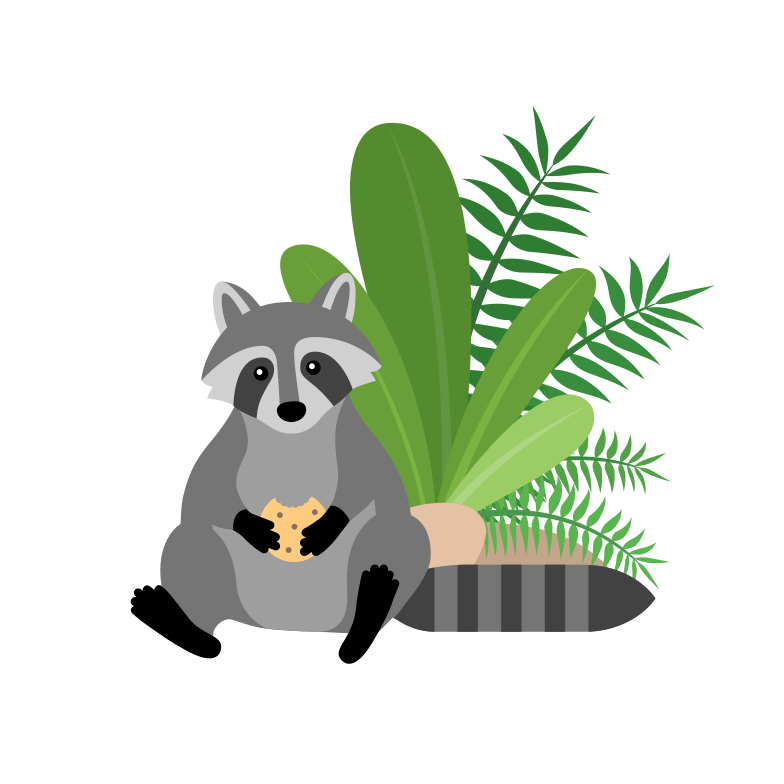 style Raccoon with a cookie  Vector images in PNG and SVG | Icons8 Illustrations