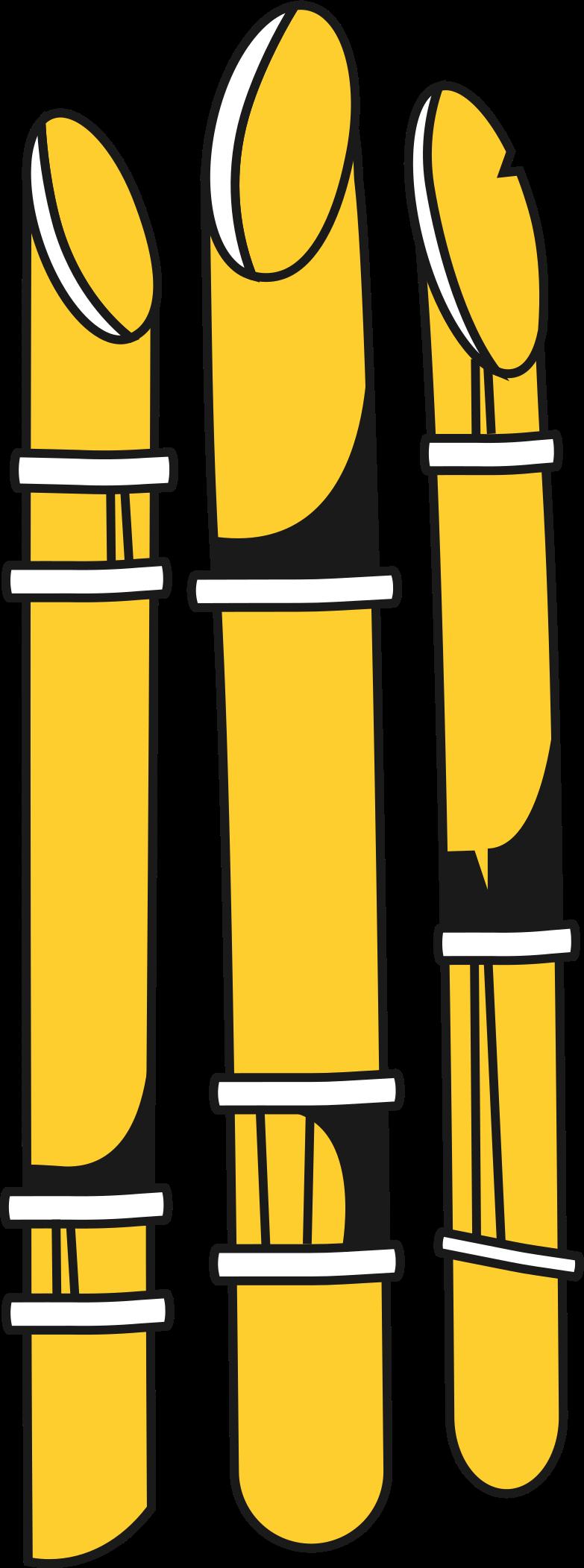 Imágenes vectoriales bambú en PNG y SVG estilo    Ilustraciones Icons8