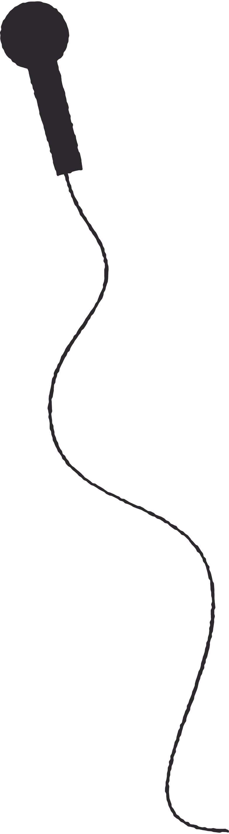 microphone wire Clipart illustration in PNG, SVG