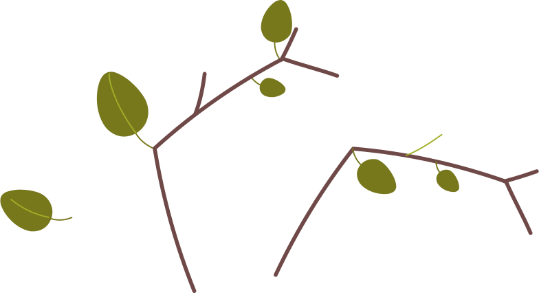 branches leaves Clipart illustration in PNG, SVG