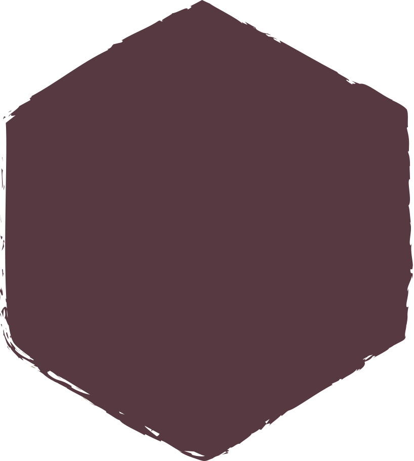style hexadon-dark-brown Vector images in PNG and SVG   Icons8 Illustrations