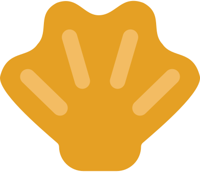 style seashell images in PNG and SVG   Icons8 Illustrations