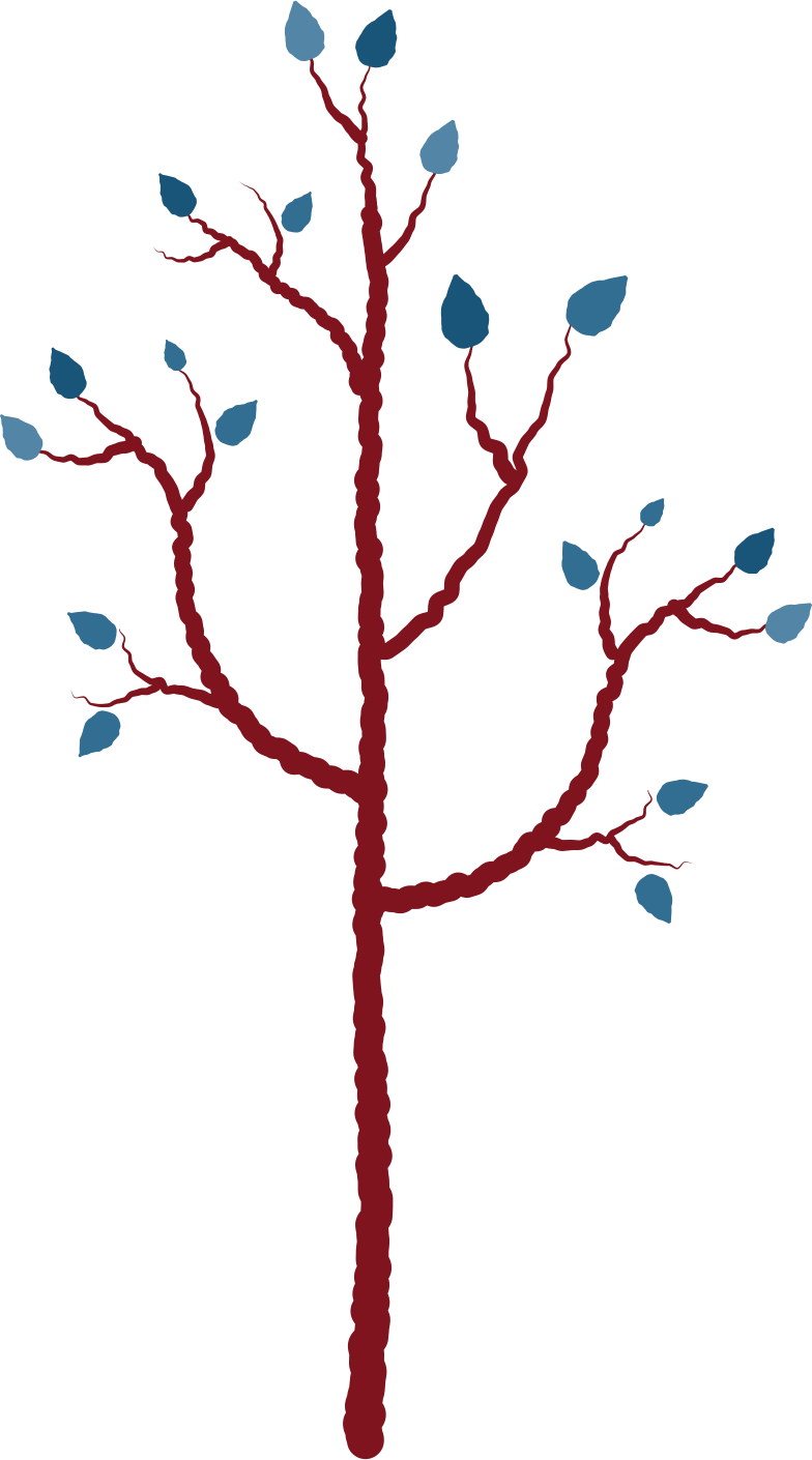 young tree Clipart illustration in PNG, SVG