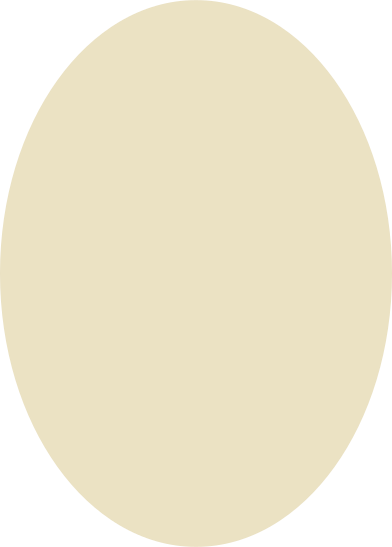 style ellipse beige images in PNG and SVG | Icons8 Illustrations