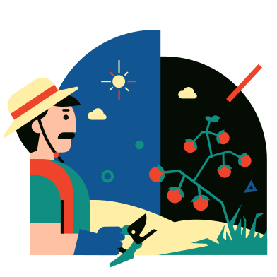 style Tomato harvest images in PNG and SVG | Icons8 Illustrations