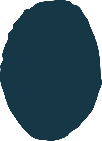 style ellipse images in PNG and SVG | Icons8 Illustrations