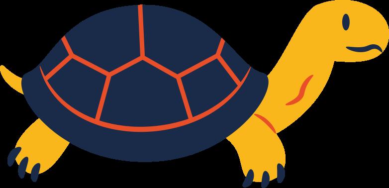 Клипарт Черепаха в PNG и SVG