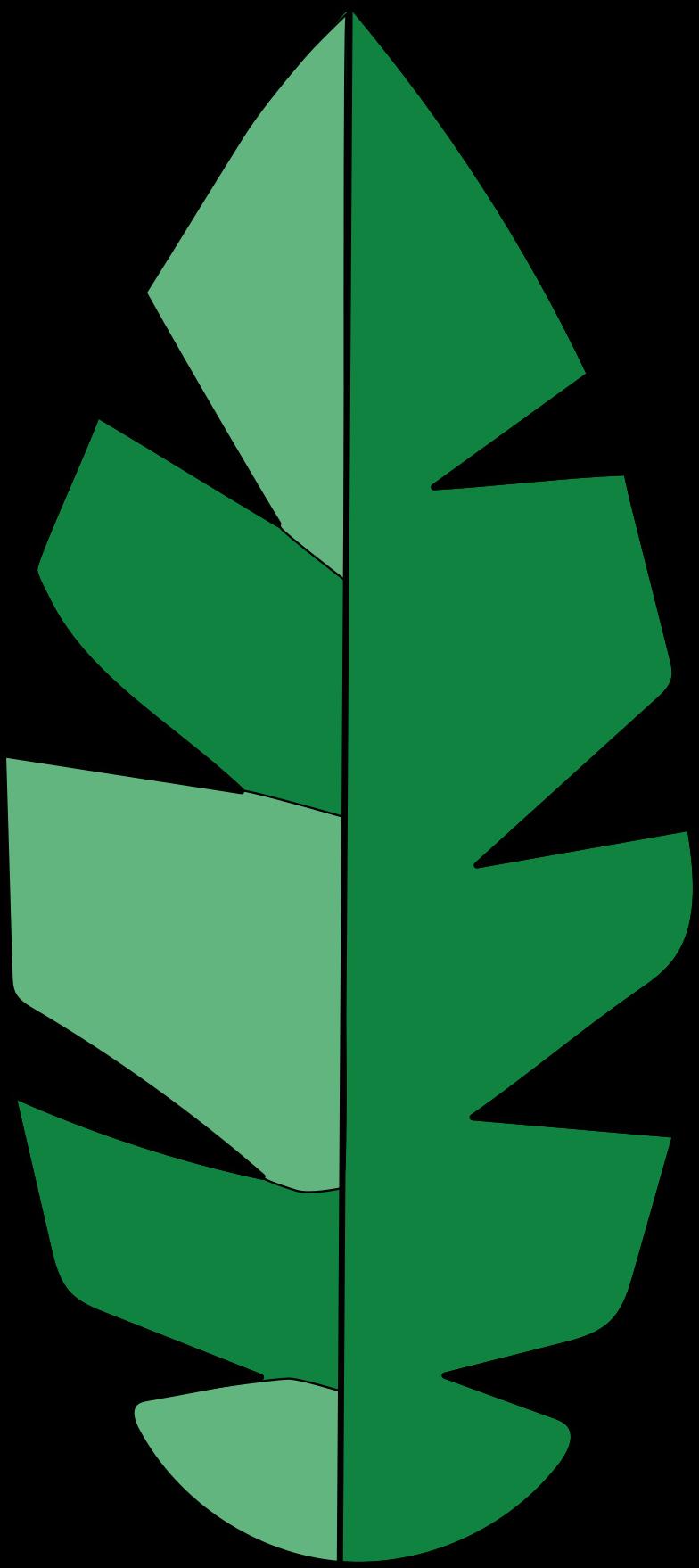 palm leaf Clipart illustration in PNG, SVG