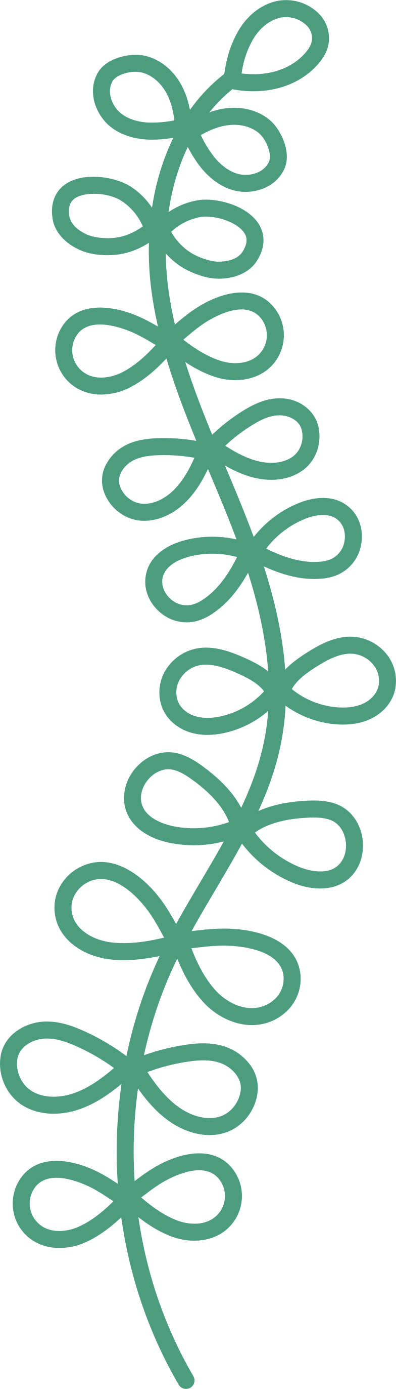 style plant Vector images in PNG and SVG   Icons8 Illustrations