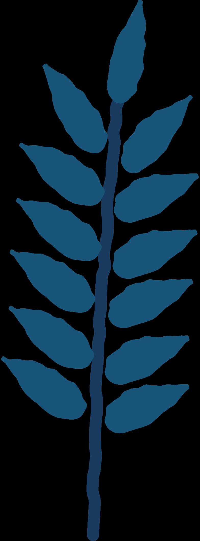 rowan leaf Clipart illustration in PNG, SVG