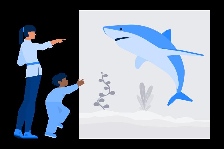 Oceanaruim Clipart illustration in PNG, SVG