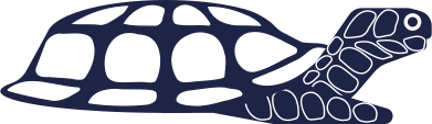 style turtle images in PNG and SVG | Icons8 Illustrations