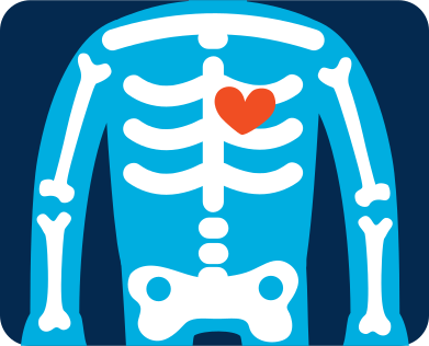 style x-ray image images in PNG and SVG | Icons8 Illustrations
