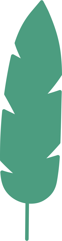 Immagine Vettoriale foglia in PNG e SVG in stile  | Illustrazioni Icons8