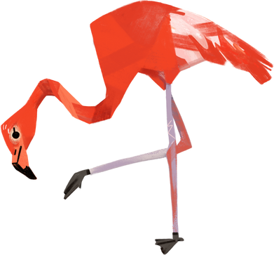style flamingos images in PNG and SVG   Icons8 Illustrations