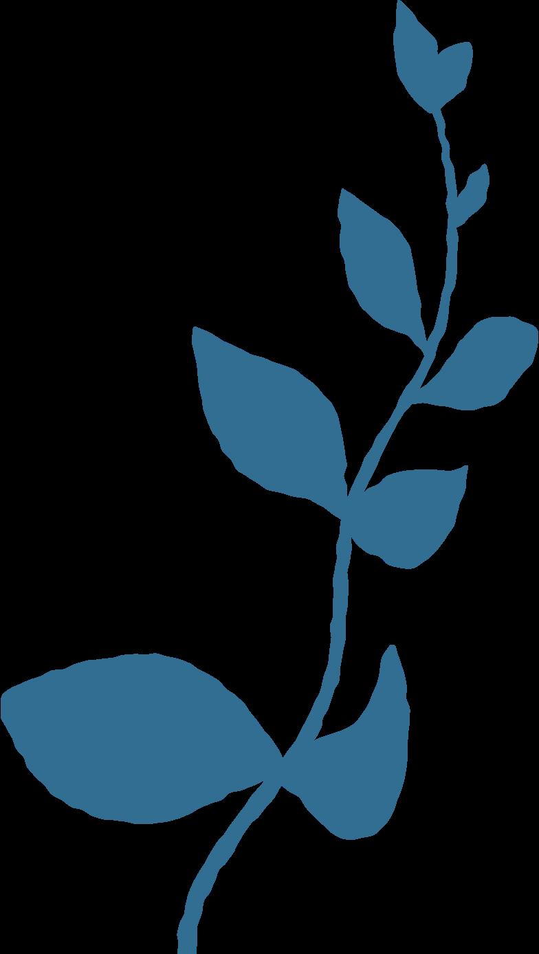 Zweig mit blattdekoration Clipart-Grafik als PNG, SVG