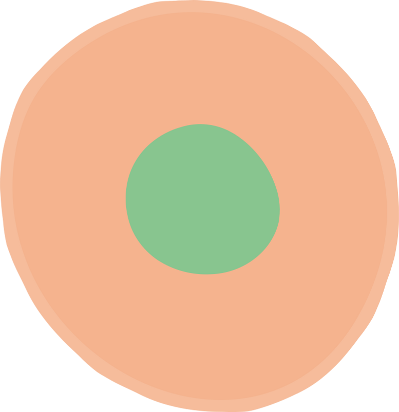 ornament Clipart illustration in PNG, SVG