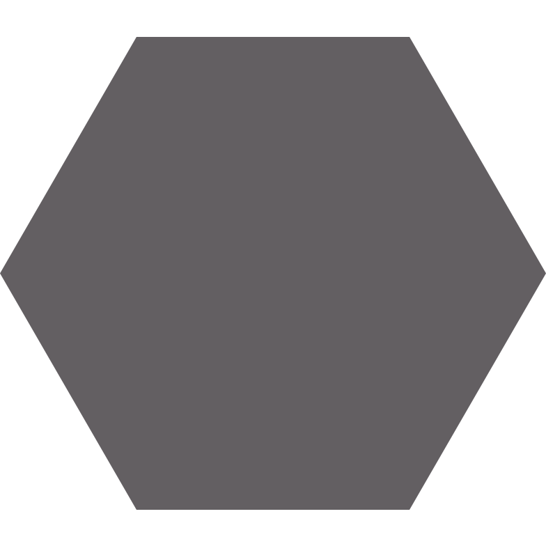 hexagon grey Clipart illustration in PNG, SVG