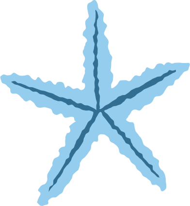style blue sea star bottom images in PNG and SVG   Icons8 Illustrations