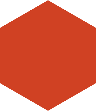 style hexagon red images in PNG and SVG   Icons8 Illustrations