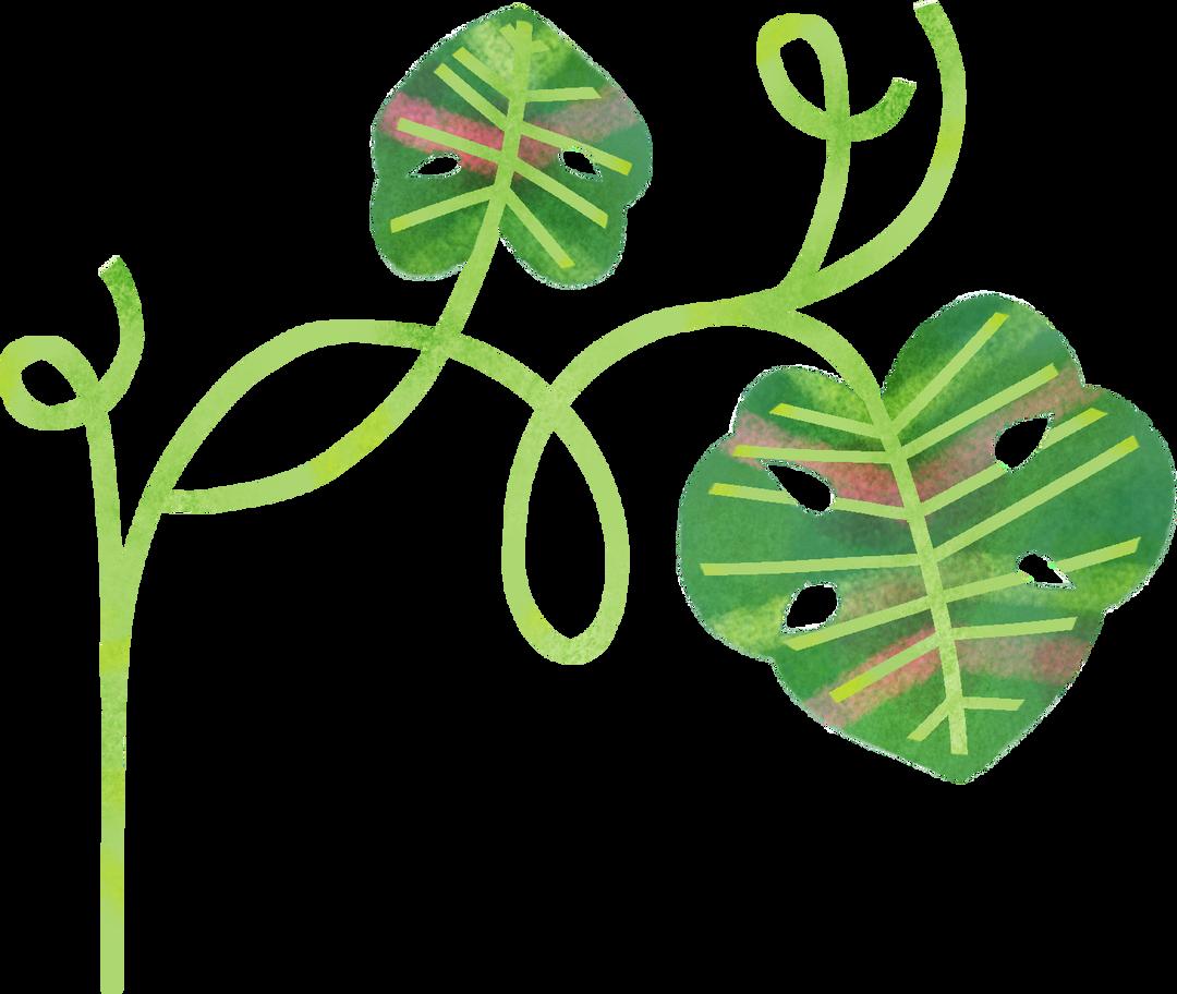 plants Clipart illustration in PNG, SVG