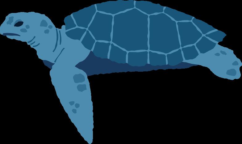 sea turtle side Clipart illustration in PNG, SVG