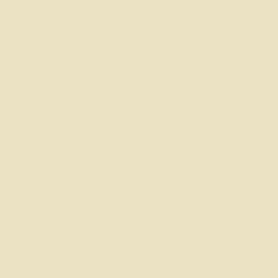 square beige Clipart illustration in PNG, SVG