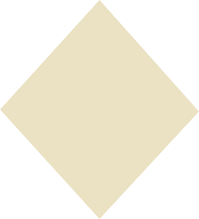style rhombus beige images in PNG and SVG | Icons8 Illustrations