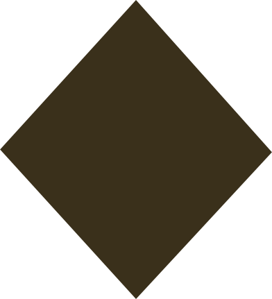 style rhombus brown images in PNG and SVG | Icons8 Illustrations