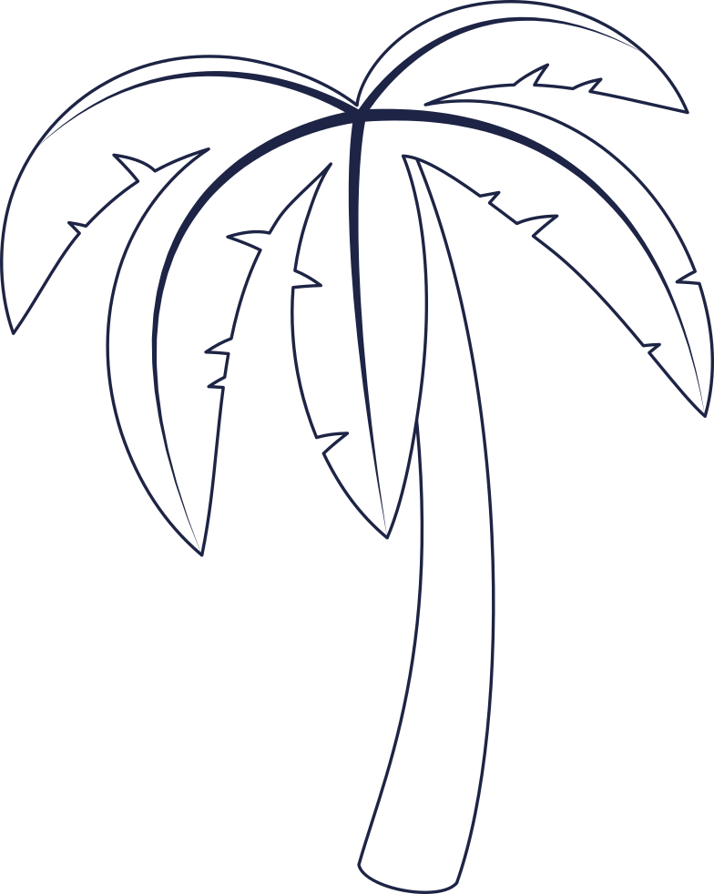 palm tree 3 line Clipart illustration in PNG, SVG