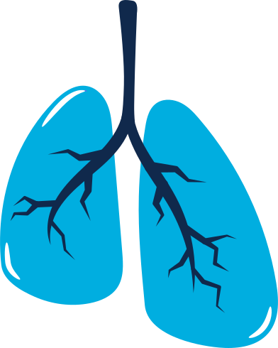 style lungs images in PNG and SVG | Icons8 Illustrations