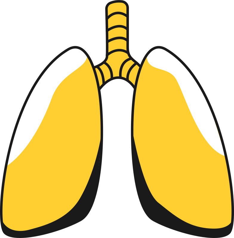 style lungs Vector images in PNG and SVG | Icons8 Illustrations