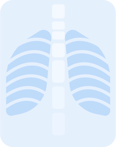 style x ray images in PNG and SVG | Icons8 Illustrations
