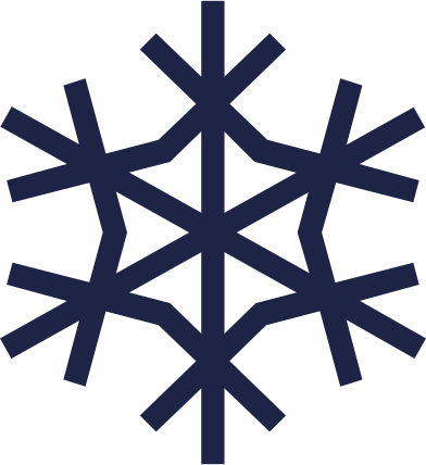style snowflake 2 line images in PNG and SVG   Icons8 Illustrations