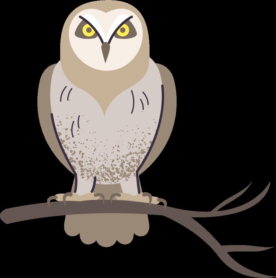 owl Clipart illustration in PNG, SVG
