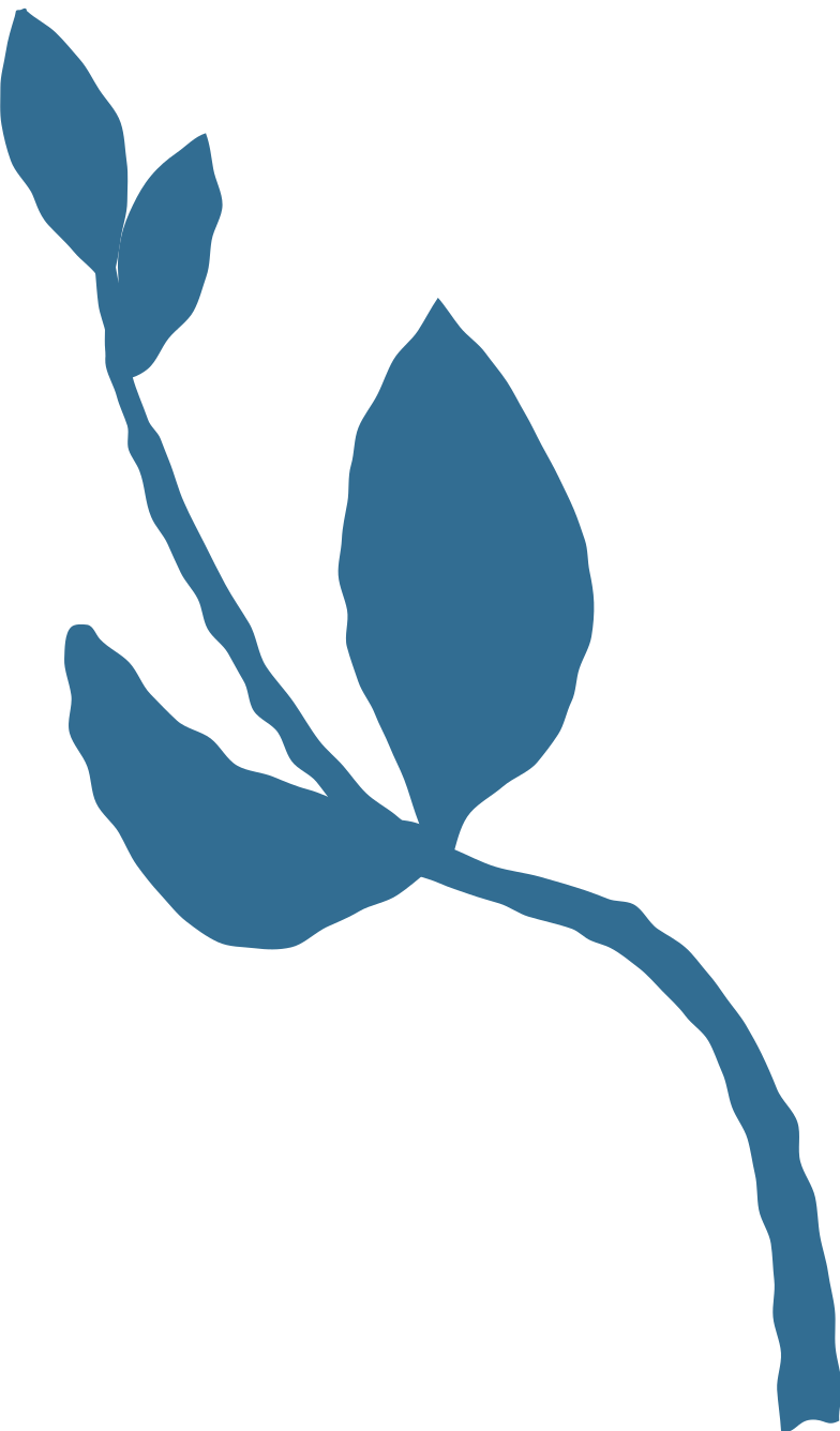 small branch with leaves Clipart illustration in PNG, SVG