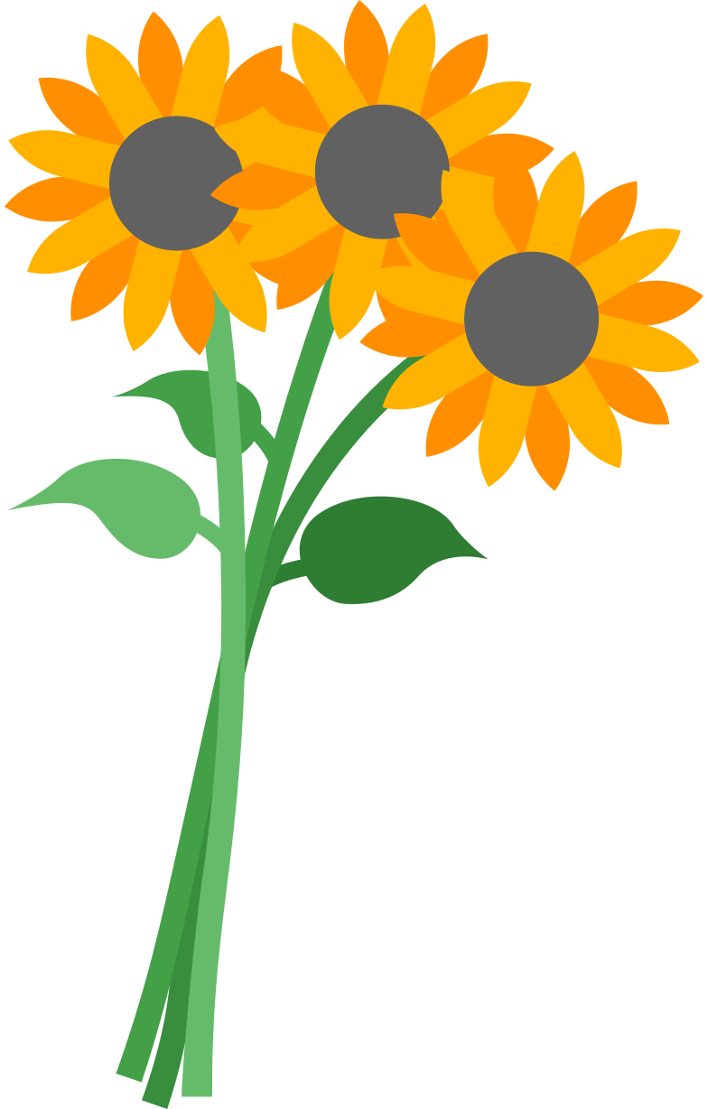 sunflowers Clipart illustration in PNG, SVG