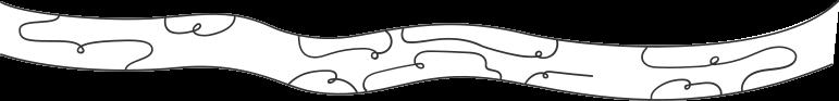wood log Clipart illustration in PNG, SVG