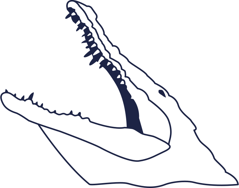 crocodail 2 line Clipart illustration in PNG, SVG