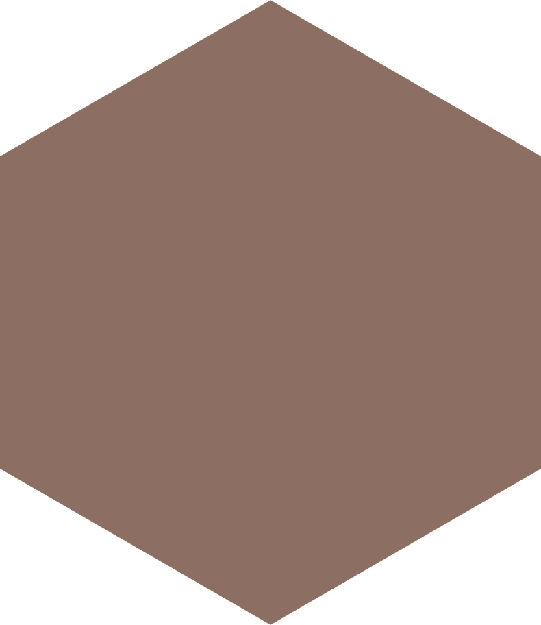 hexagon brown Clipart illustration in PNG, SVG