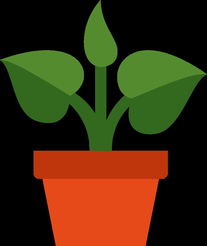 plant in pot Clipart illustration in PNG, SVG