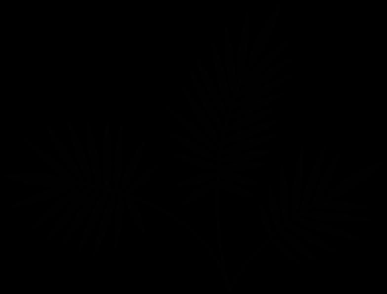 Immagine Vettoriale pianta in PNG e SVG in stile  | Illustrazioni Icons8
