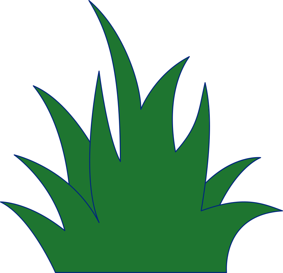 grass Clipart illustration in PNG, SVG
