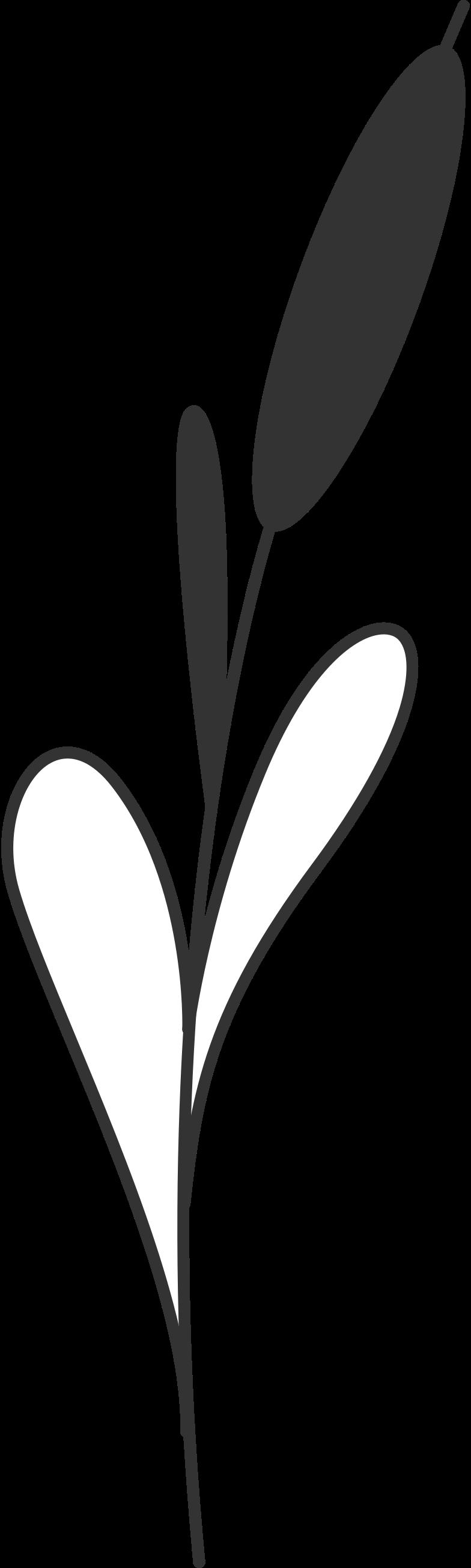 Immagine Vettoriale canna in PNG e SVG in stile  | Illustrazioni Icons8
